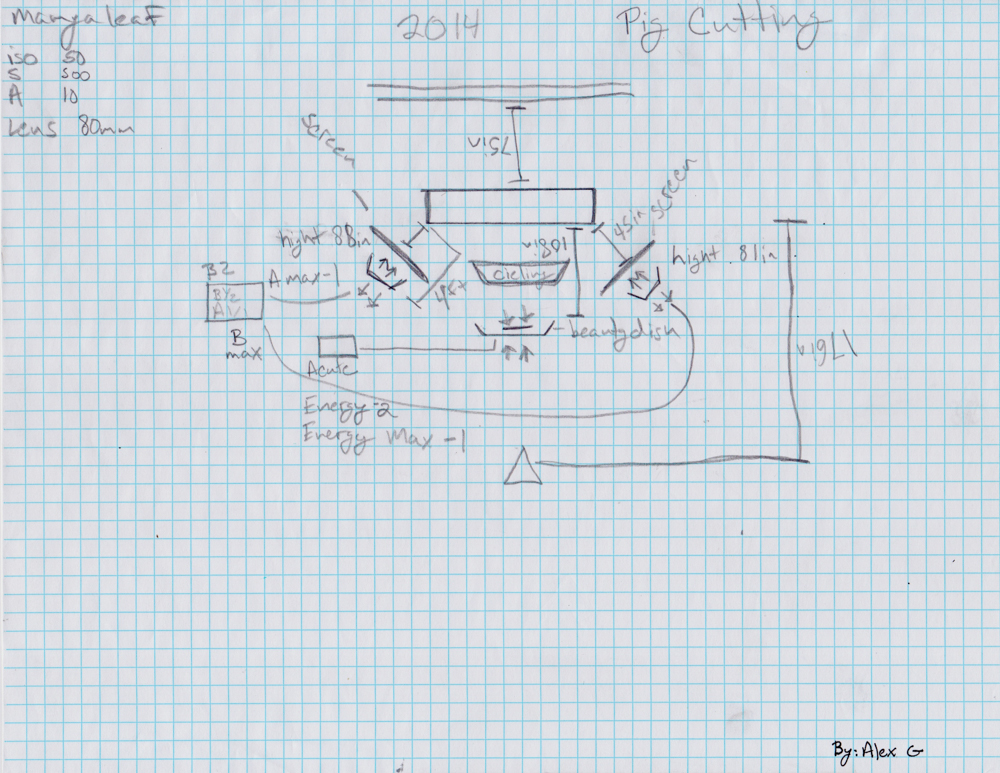 Lanny Chin Light Diagram